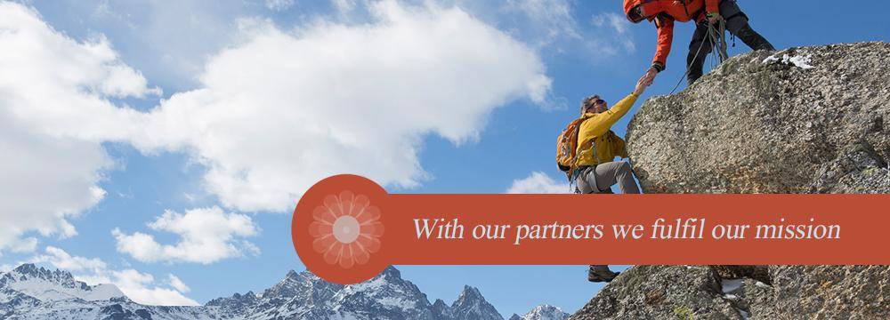 Bigfatstories_partners